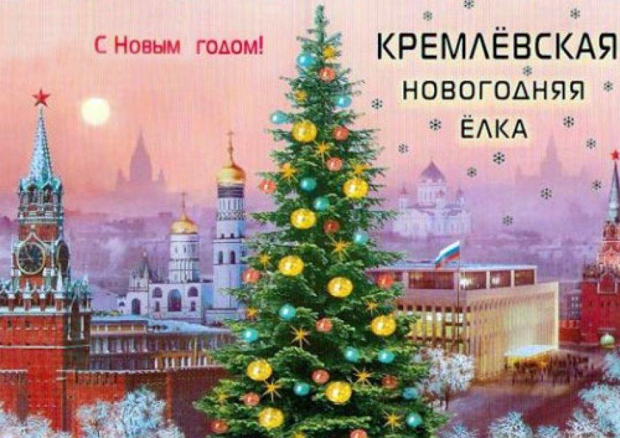Дети изВладимирской области побывают наКремлевской елке